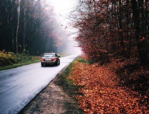 Herbstcheck – immer sicher unterwegs
